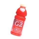 Gatorade G2 Series Fruit Punch